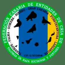 logo-federacion-canaria