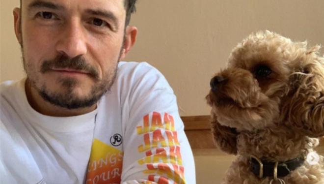 """""""Aprecia los momentos junto a los que amas"""": Orlando Bloom se despide de su perro perdido"""