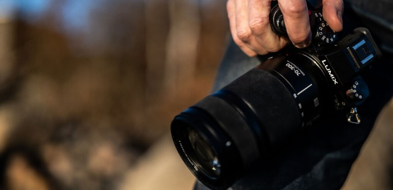 Panasonic Lumix S 70-300mm F4.3-5.6 Macro O.I.S, nuevo teleobjetivo zoom para naturaleza y vida salvaje de la montura L