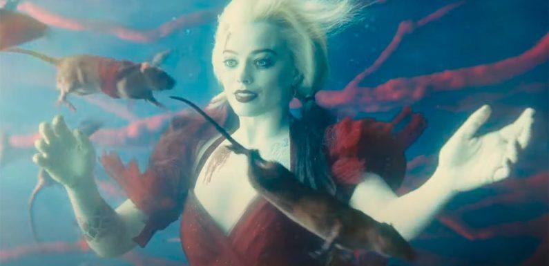 Balas de kryptonita, comadrejas asesinas y Harley Quinn rodeada de ratas: 'El Escuadrón Suicida' estrena nuevo tráiler