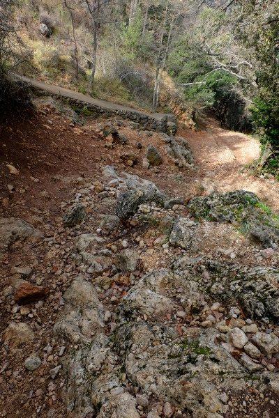 Montée durant le Tour du Mont Chauve