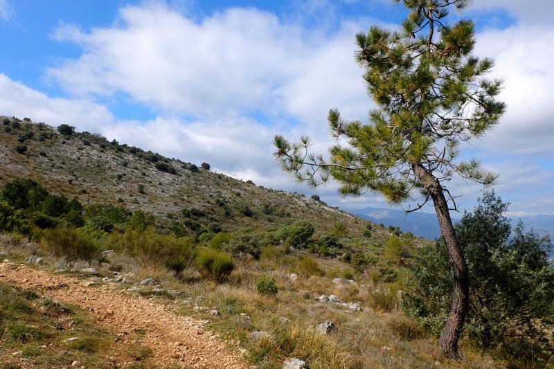 Vue depuis le Tour du Mont Chauve