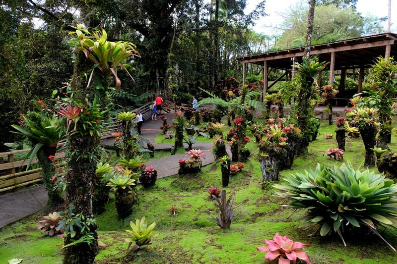 Visite du Jardin de Balata