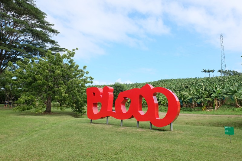 "Oeuvre ""Blood"" de Thiery Alet"
