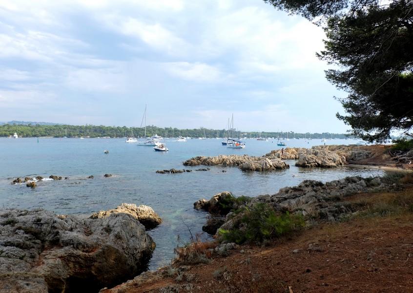 Se baigner sur l'Île Saint-Honorat