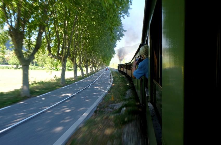 Le train des pignes qui circule à côté d'une petite route avec des voitures