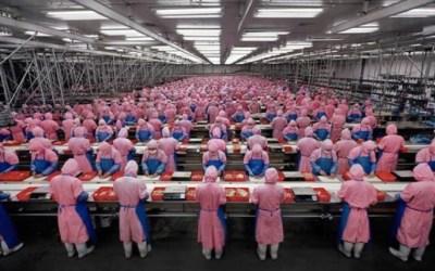 Industrie du Parfum : Créer, pour quoi faire ?