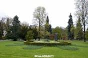 Brasov_copyright_Dan_STRAUTI (40) (Copy)