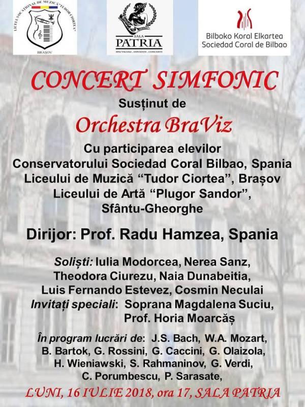 Orchestra BraViz