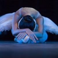 Lecție de balet