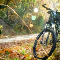 """,,Calea verde a Brașovului"""" - conectarea cartierelor orașului și a zonei metropolitane cu soluții de transport electric, cu bicicleta și pietonal"""