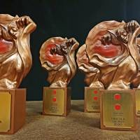 """""""AMIGO"""" a câștigat Dracula Trophy, premiul pentru cel mai bun film de lungmetraj"""