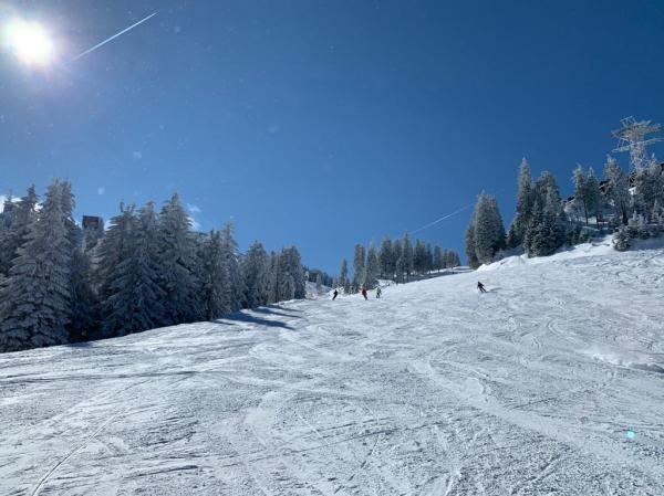 Small Evolving Ski Nations Race