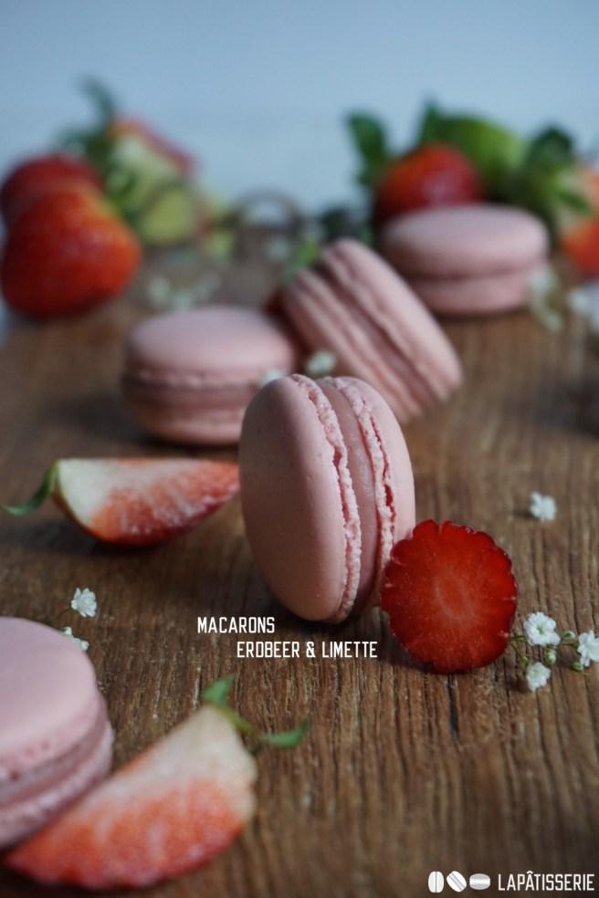 Endlich wieder Macarons! Für den Frühling mit Erdbeere und Limette.