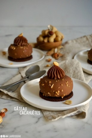 Gâteau Cacahuétes: Erdnussmousse mit Karamellkern und Schokoladenbiskuit umhüllt von Vollmilchschokolade.