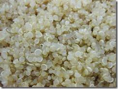 upclose-cooked-quinoa