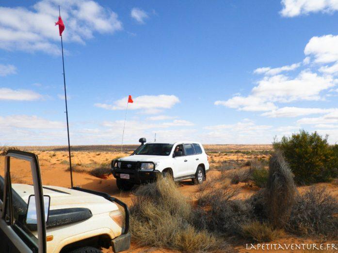 voitures dans le désert du Simpson