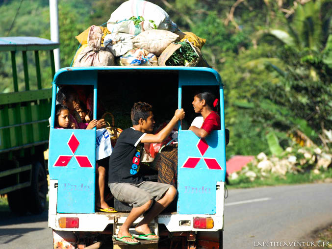 bus indonésien