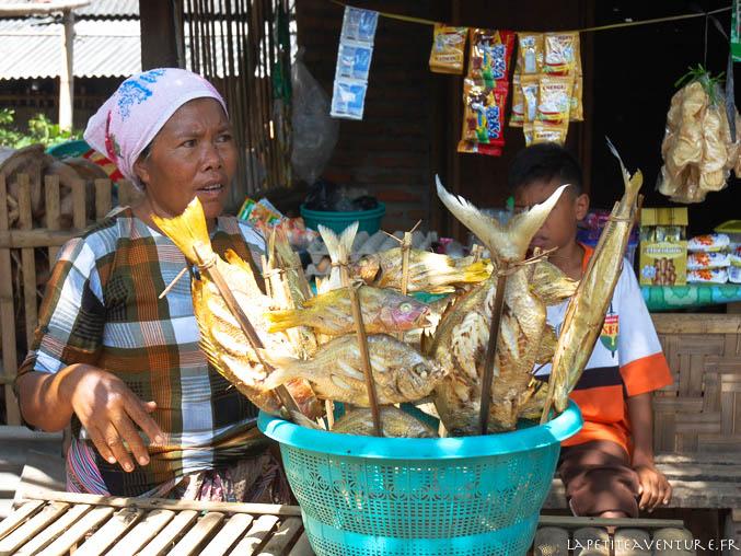 poissons à kuta lombock