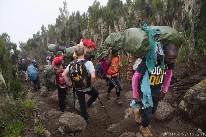 kilimandjaro et ses porteurs