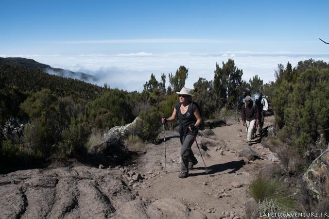 rando du kilimandjaro