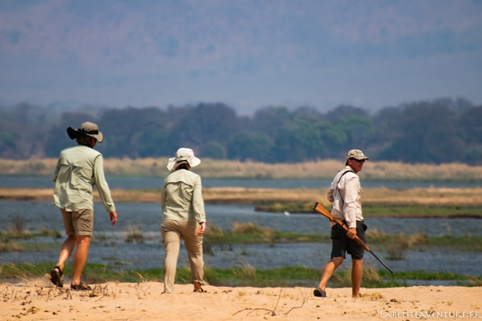 safari à Mana Pools