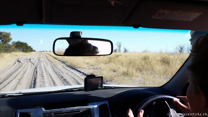 Piste de 4x4 dans le Kalahari
