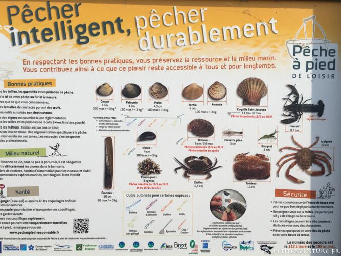 la pêche en Bretagne