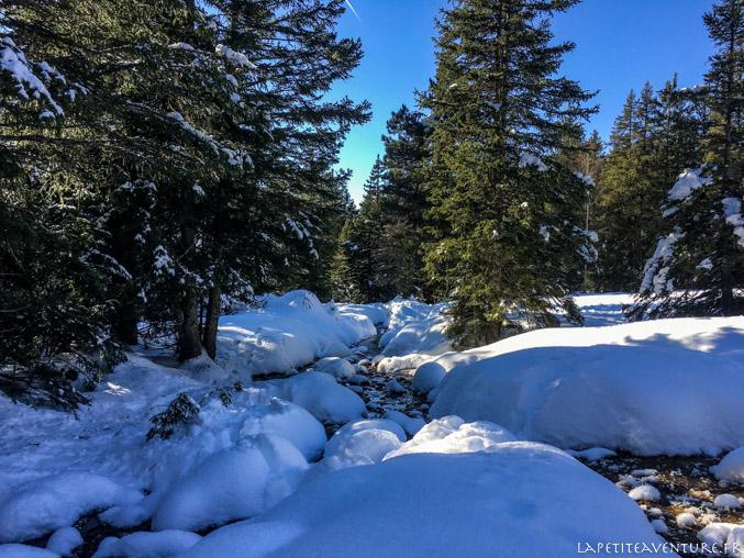 Paysage d'hiver à Chamrousse