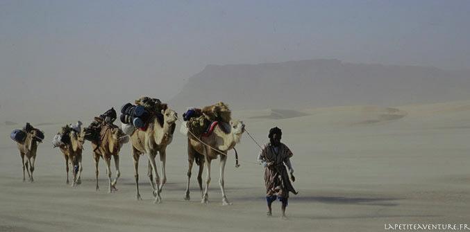 Méharée en Mauritanie
