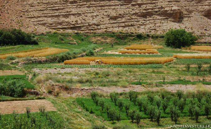 La vallée des Aït Bougmez au Maroc