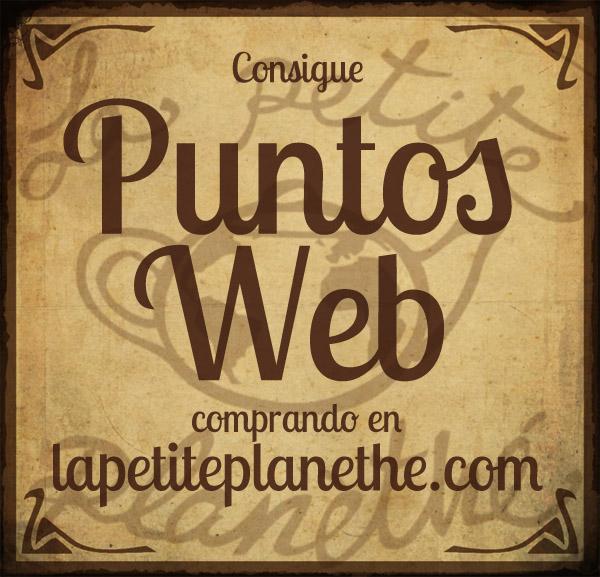 Puntos Web