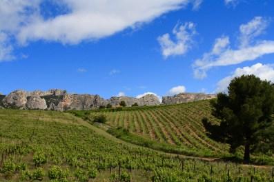 Le massif des Dentelles de Montmirail, tirant leur nom de la forme dentellée des roches qui les composent.
