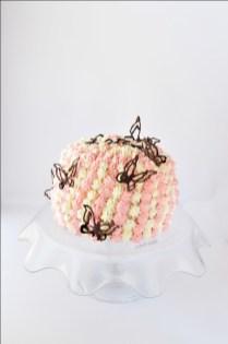Torta funfetti (1)