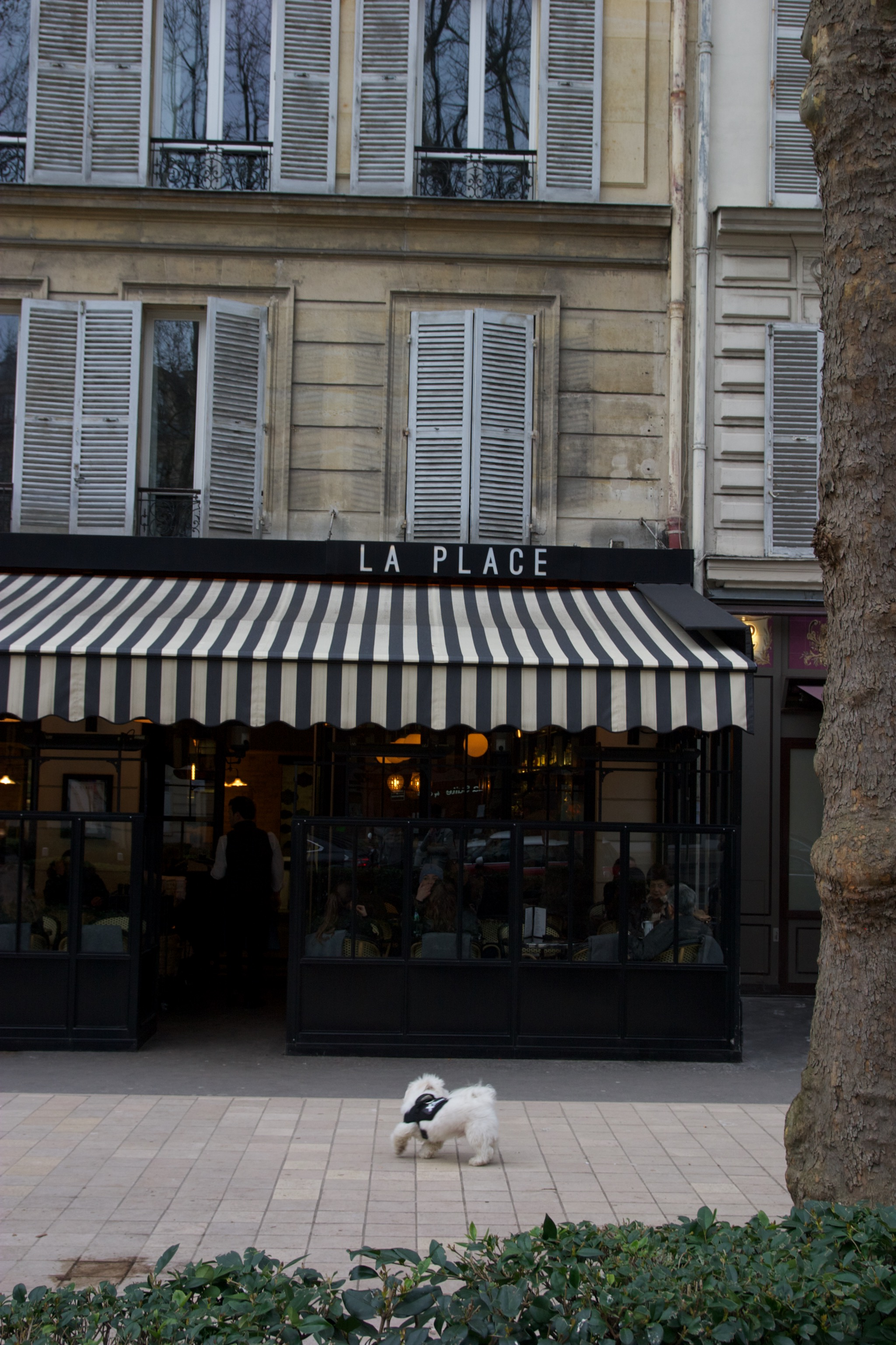 Terrasse hiver, restaurant, bar, La Place, Neuilly