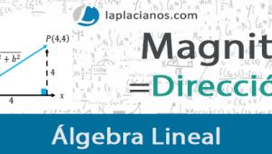 Magnitud y Dirección de un Vector – Ejercicios Resueltos