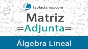 Matriz Adjunta – Ejercicios Resueltos