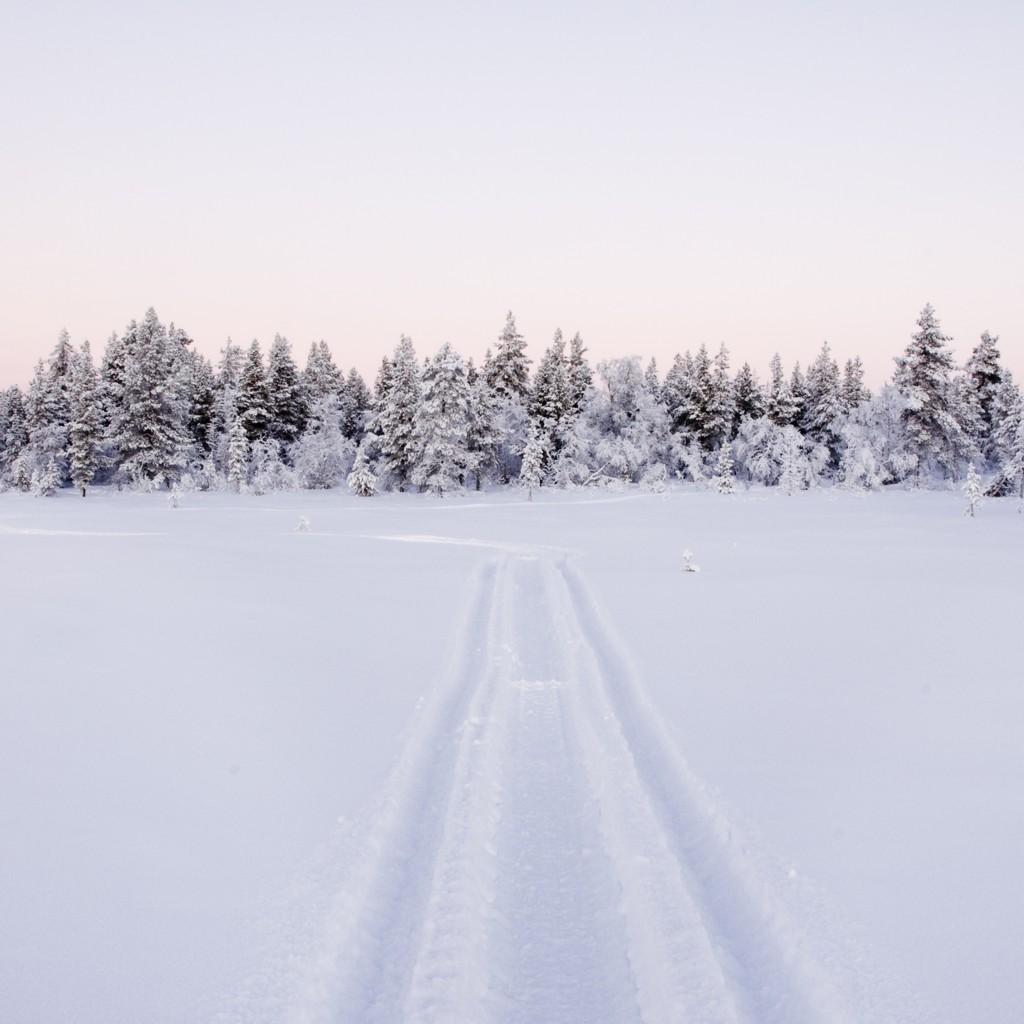 White Xmas in Lapland