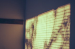 sunlight <3