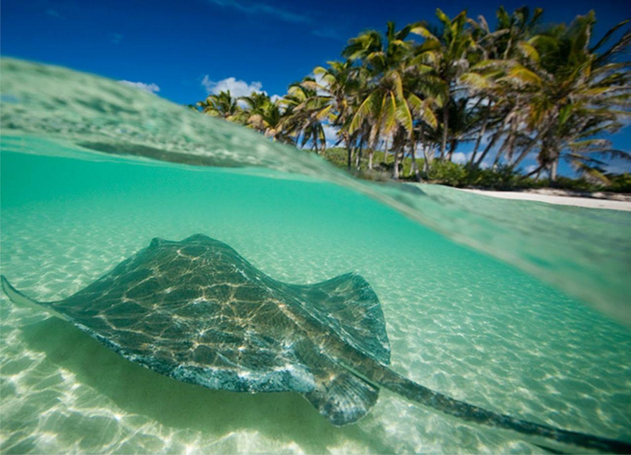 playas en riviera maya 5