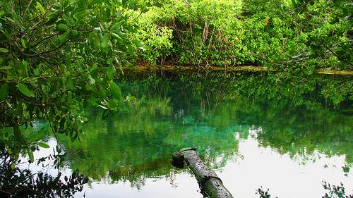 playas en riviera maya 2