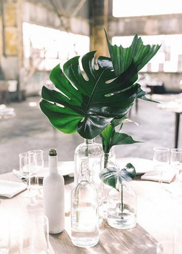 4 plantas para centros de mesa minimalistas y elegantes