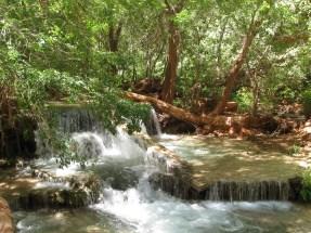 Down stream of Moony Falls