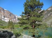 Hiking along the base of Parker Lake