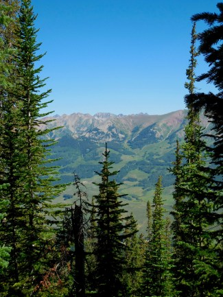 View along our hike to the Summit of Crested Butte