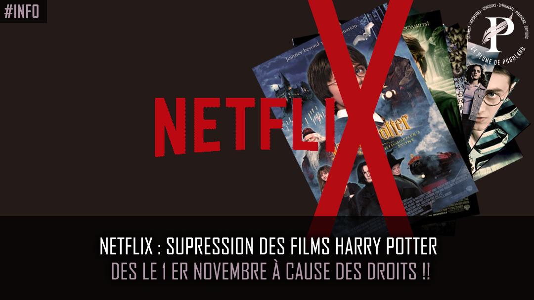 Netflix : supression des films Harry Potter des le 1er novembre à cause des droits !!