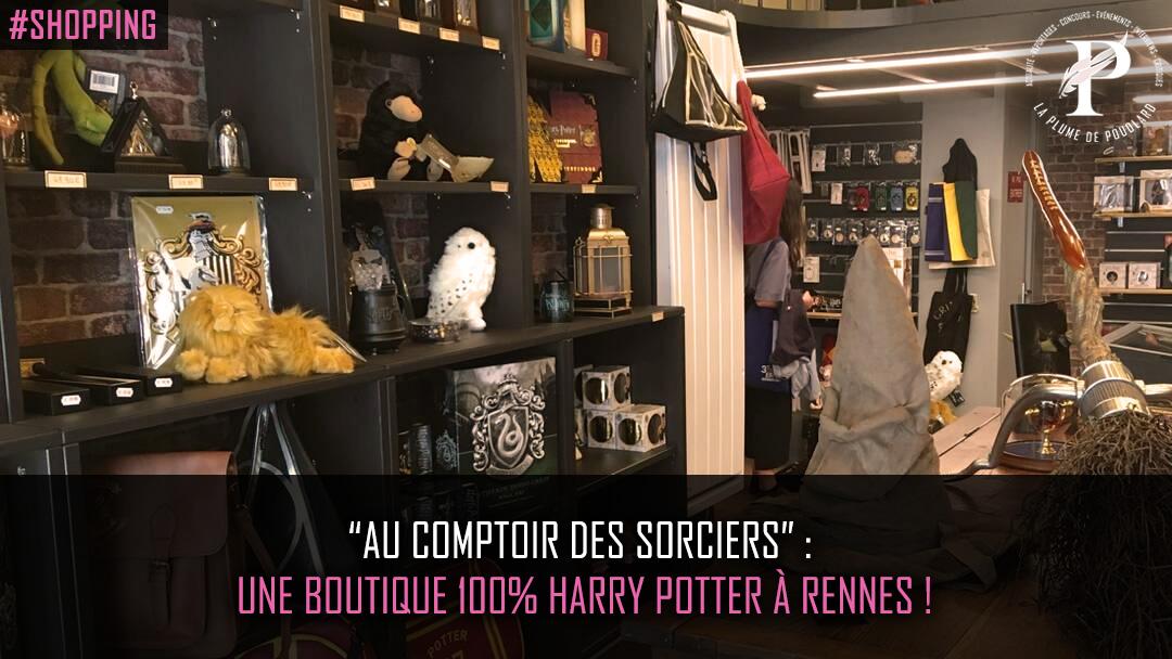 """""""Au comptoir des sorciers"""" : une boutique 100% Harry Potter à Rennes !"""