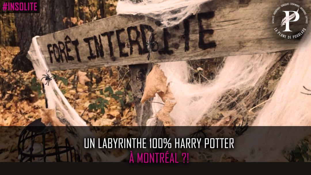 Un labyrinthe 100% Harry Potter à Montréal ?!