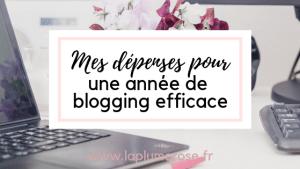 Dépenses blogging en une année
