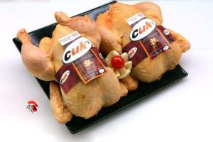 Pollo de corral, pollería selecta